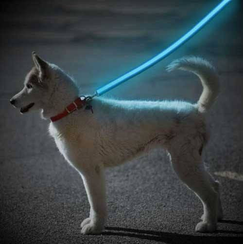 LED Glow Safety Dog Leash - Gift