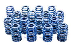 LS Valve Spring GM Part 12625033 for LS Engine (Set of 16)