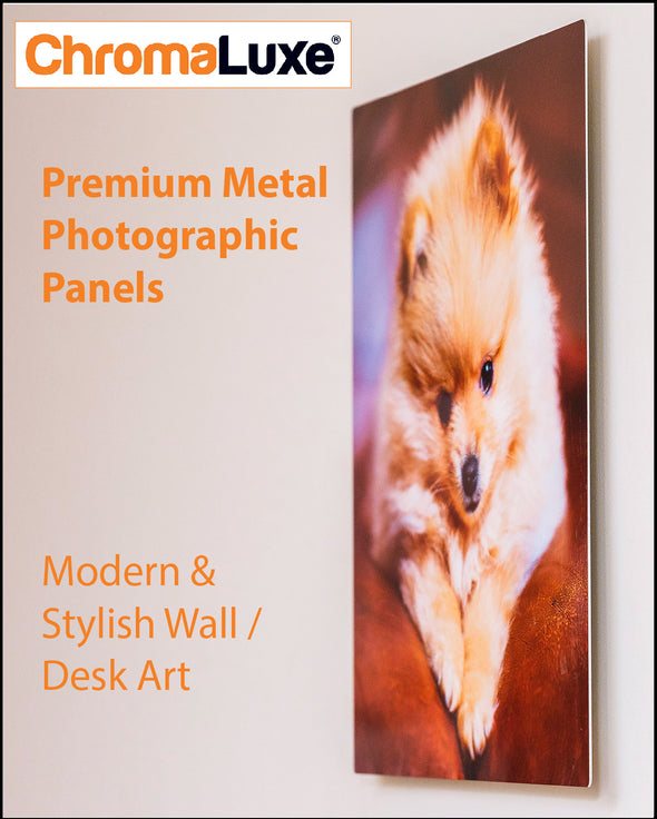 Metal Chromaluxe  Photographic Panel - Rectangle Format