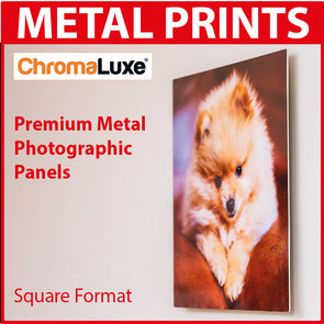 Metal Chromaluxe Photographic Panel - Square Format
