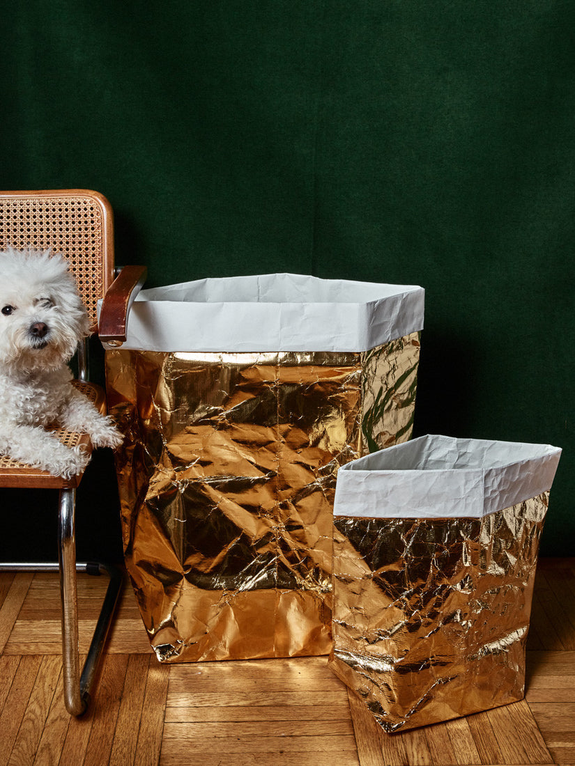 Metallic Paper Laundry Bag