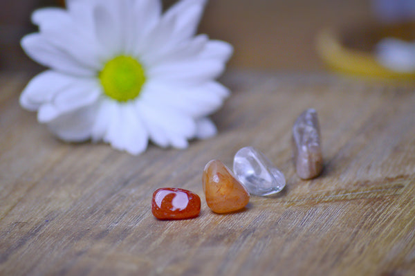 Sacral Chakra Balance Kit | Svadhisthana Crystals for Creativity, Motivation, Sensuality Sacred Soul Stones