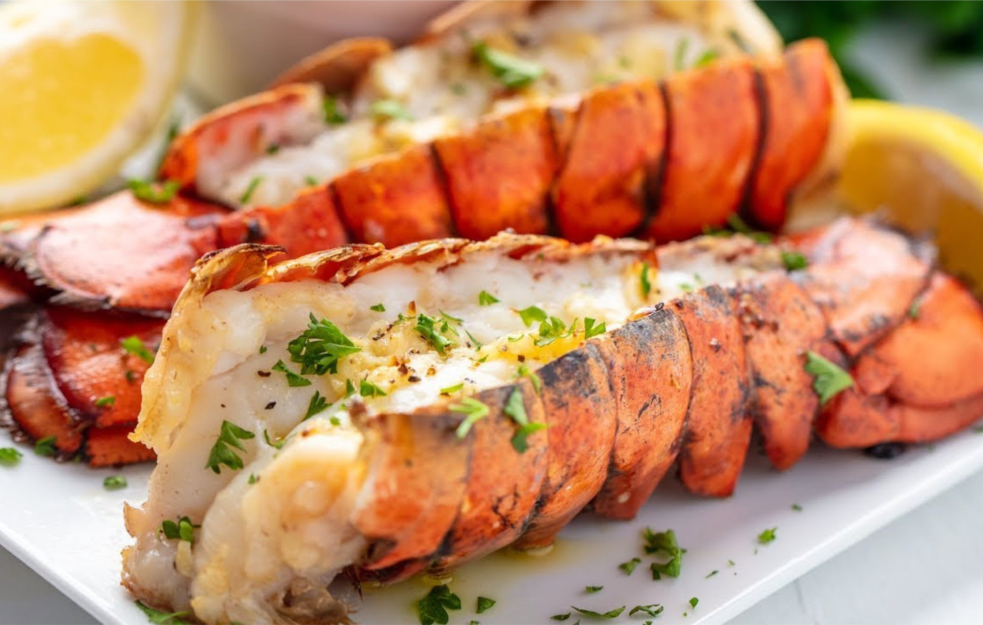 Baked Lobster ...mmm!