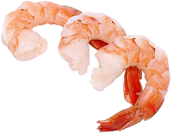 Shrimp Sizes