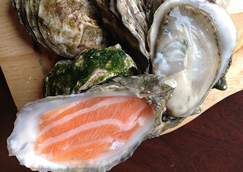 Shucker Paddy Salmon Oyster