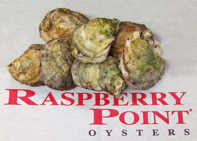 OYSTER 100 CT -RASPBERRY POINT CASE