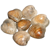 CLAMS CHERRYSTONE 5 LB