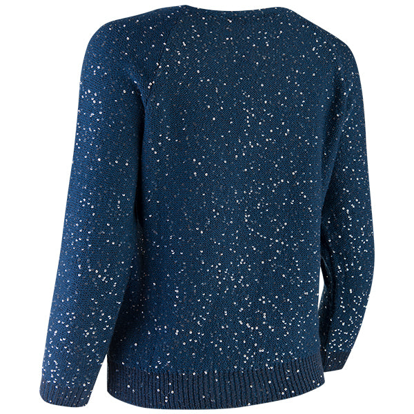 Sequin Crewneck Raglan Pullover in Denim Blue