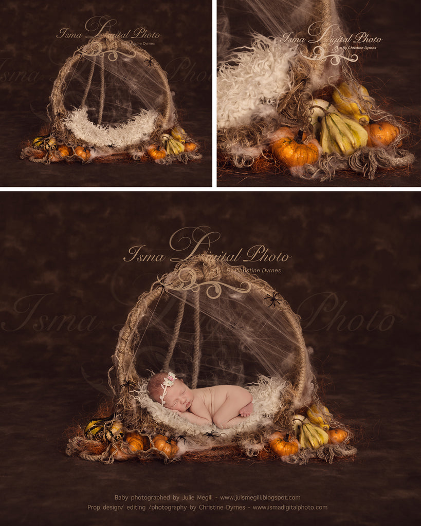 Purchase 2 Halloween digital backdrops and get 50% off!