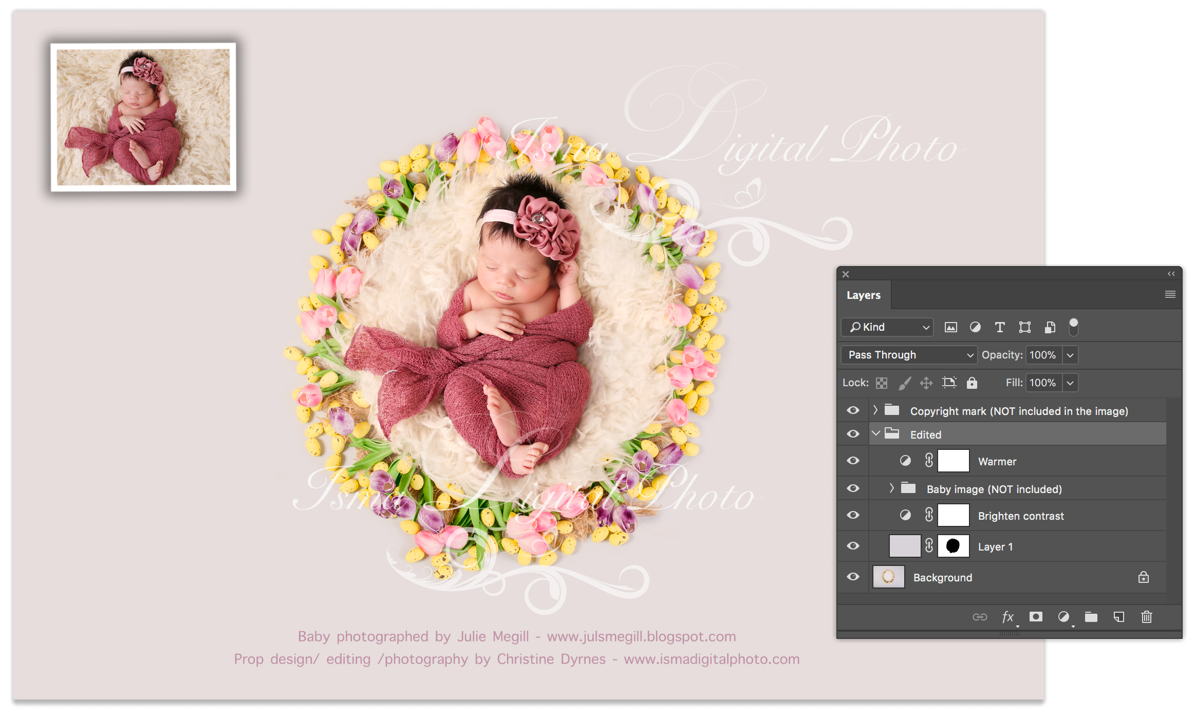 Digital Photography Backdrop /Props for Newborn Photography - High resolution digital backdrop - One JPG and one PSD file with layers