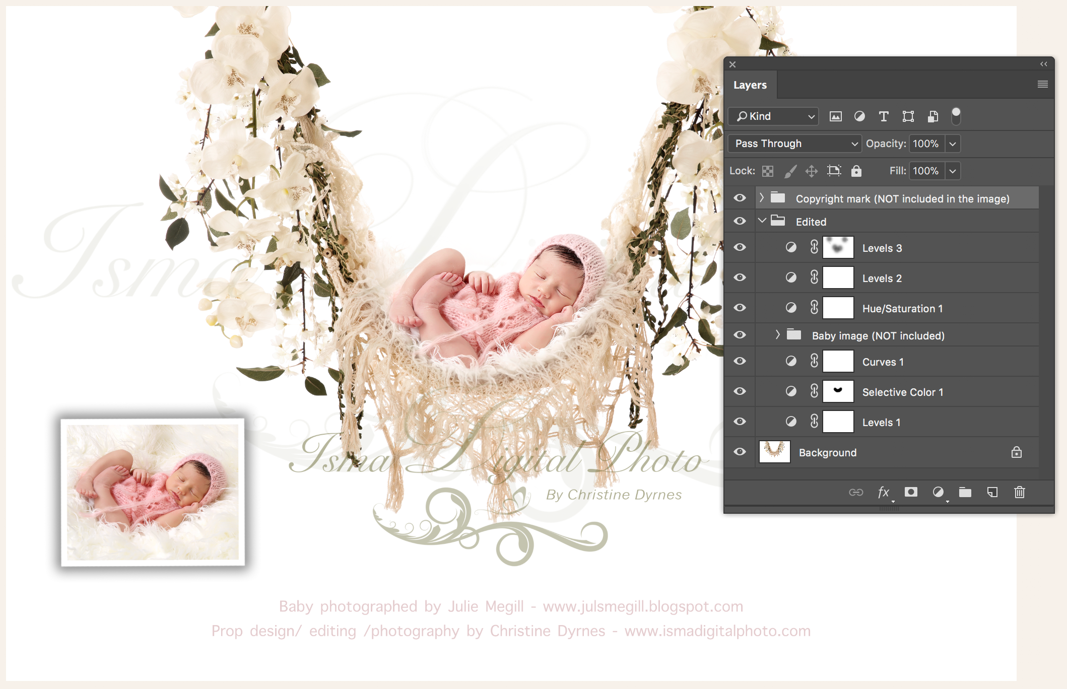 Hammock with pure white background and flowers 2  Digital Photography Backdrop /Props for Newborn Photography - High resolution digital backdrop - One JPG and one PSD file with layers