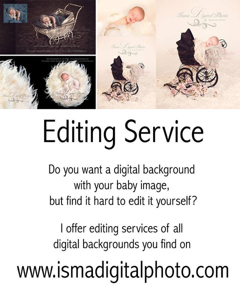Purchases - editing service