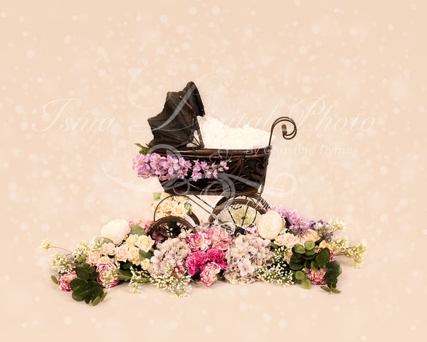 Antique baby carriage - Digital backdrop /background - psd with layers