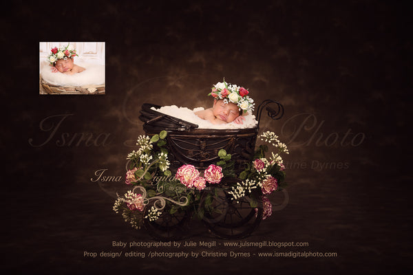 Antique Baby Carriage With Dark Background And Flower - Digital Photography Backdrop /Props for Newborn Photography - psd with Layers
