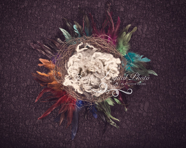 Artistic Feather Nest 2 - Beautiful Digital background Newborn Photography Prop download