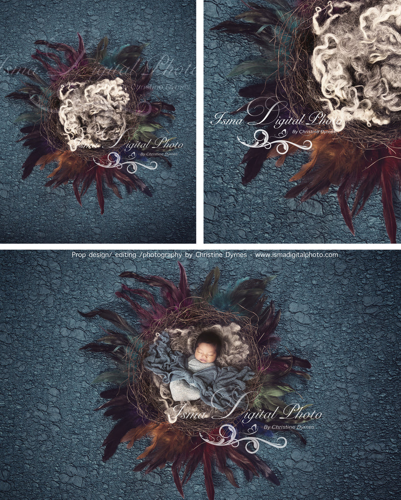 Artistic Feather Nest - Beautiful Digital background Newborn Photography Prop download