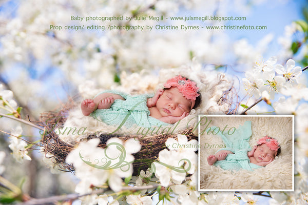 Nest Cherry Blossom - Beautiful Digital background Newborn Photography Prop download