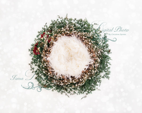 Christmas newborn wreath - Digital backdrop - psd with layers