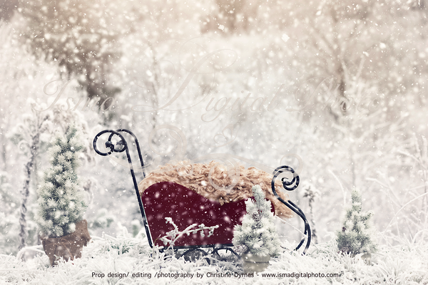 Christmas sled in winter land - Newborn digital background - JPG