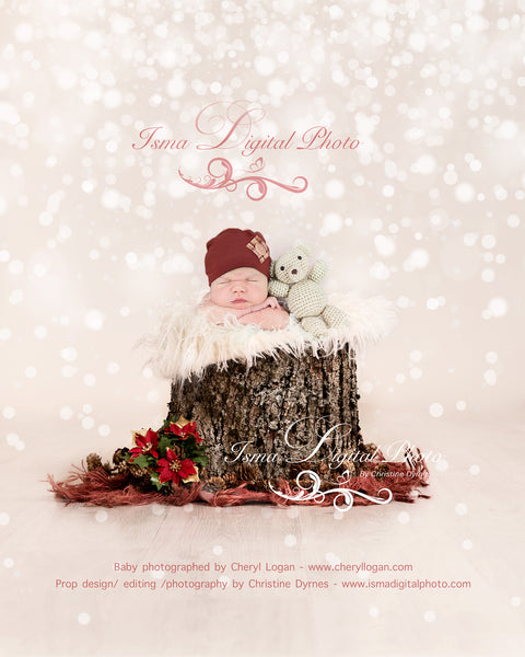 Christmas tree stump - Newborn digital backdrop - psd with layers