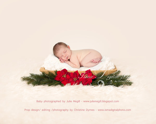 Christmas Wooden Barrels  - Beautiful Digital background Newborn Photography Prop download - psd with layers