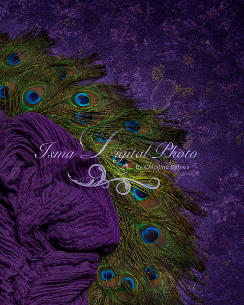 Digital peacock feather circle design with texture - Newborn digital backdrop /background - JPG