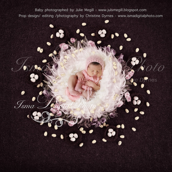 Easter Feathers Nest With Tullips And Egg - Digital background Newborn Photography Prop download - psd with layers