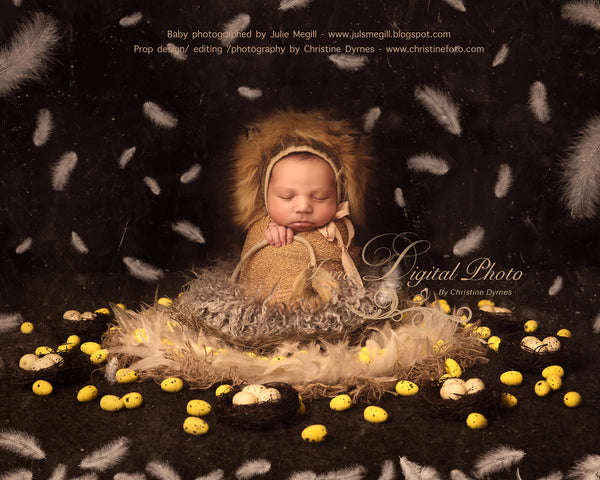 Easter Nest With Feathers  - Beautiful Digital background Newborn Photography Prop download - psd with layers