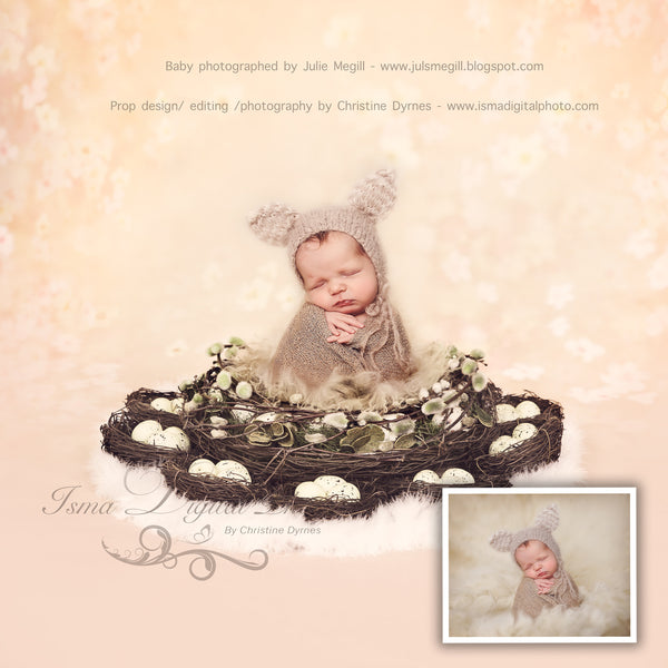 Easter Wreath With Eggs And Nests - Light Colors - Beautiful Digital background Newborn Photography Prop download