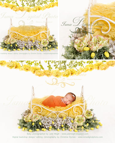 Iron Bed - Newborn digital backdrop /background