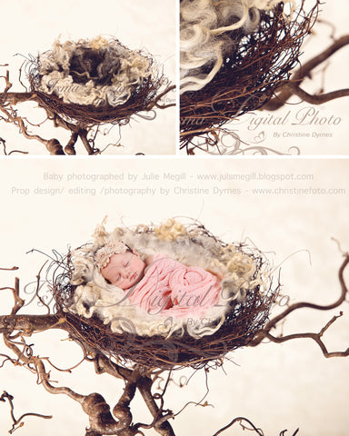 Nest 2 - Beautiful Digital background Newborn Photography Prop download