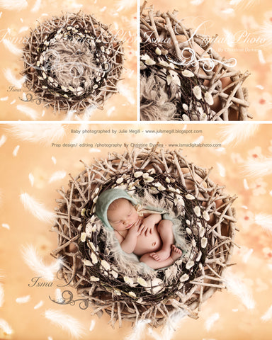 Easter Wreath With And Without Feathers - Beautiful Digital background Newborn Photography Prop download