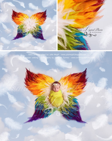 Rainbow Feather Butterfly - Digital background backdrop Newborn Photography Prop download - psd file with Layers