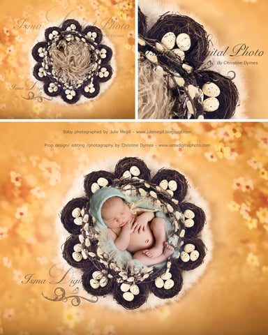 Easter Wreath With Eggs And Nests - Beautiful Digital background Newborn Photography Prop download