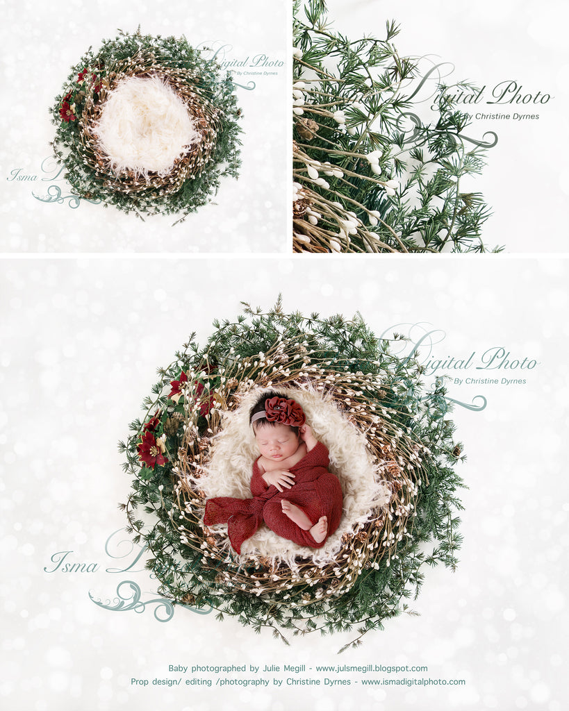 Newborn Christmas Pictures.Christmas Newborn Wreath Digital Backdrop Psd With Layers