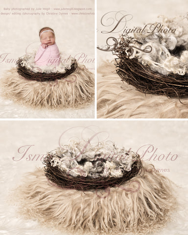 Vintage Nest with wool 2 - Beautiful Digital background Newborn Photography Prop download