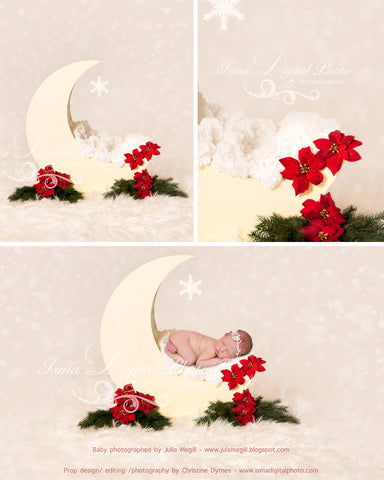 Christmas Moon  - Beautiful Digital background Newborn Photography Prop download - psd with overlay