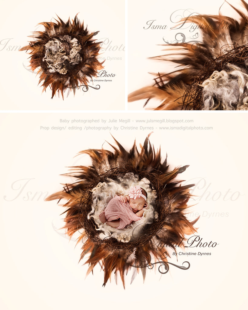 Nest Feather With Light Background - Digital Newborn Photography Prop