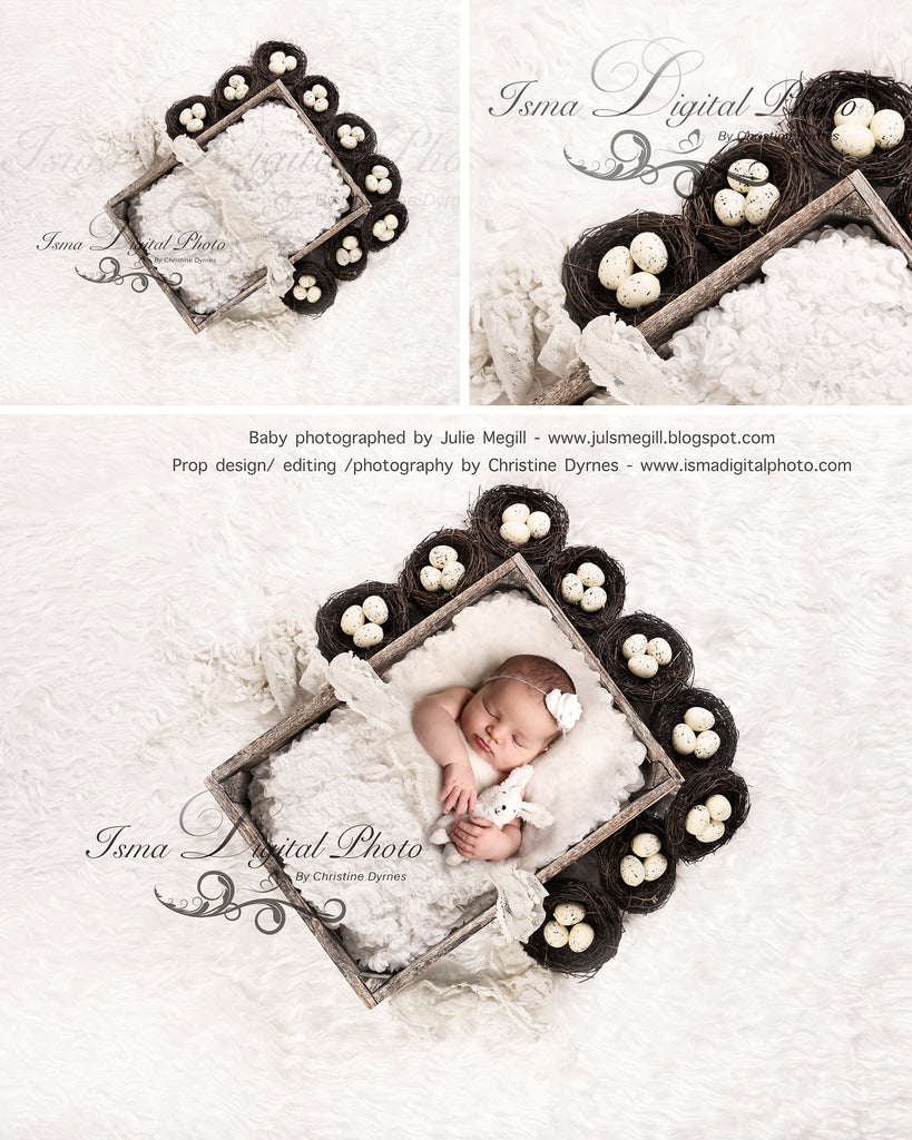Easter Wooden Box With Egg - Beautiful Digital background Newborn Photography Prop download