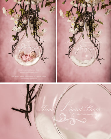 Glass Bowl With Pink Background - Beautiful Digital Newborn Photography Props download