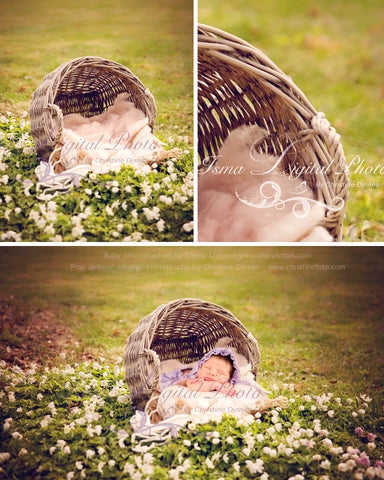 Basket nature outdoor - Beautiful Digital background Newborn Photography Props download - with white flowers, anemone nemorosa
