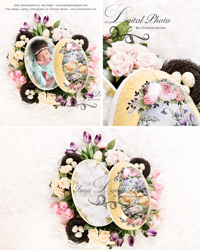 Easter Egg With Flower - Beautiful Digital background Newborn Photography Props download