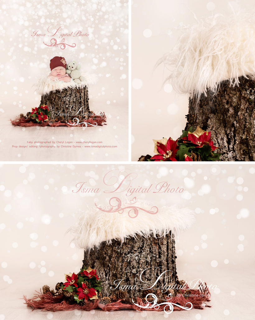 Newborn Christmas Pictures.Christmas Tree Stump Newborn Digital Backdrop Psd With Layers