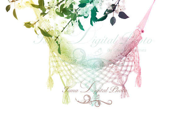 Hammock with pure white background and flowers - Digital backdrop /background - psd with layers
