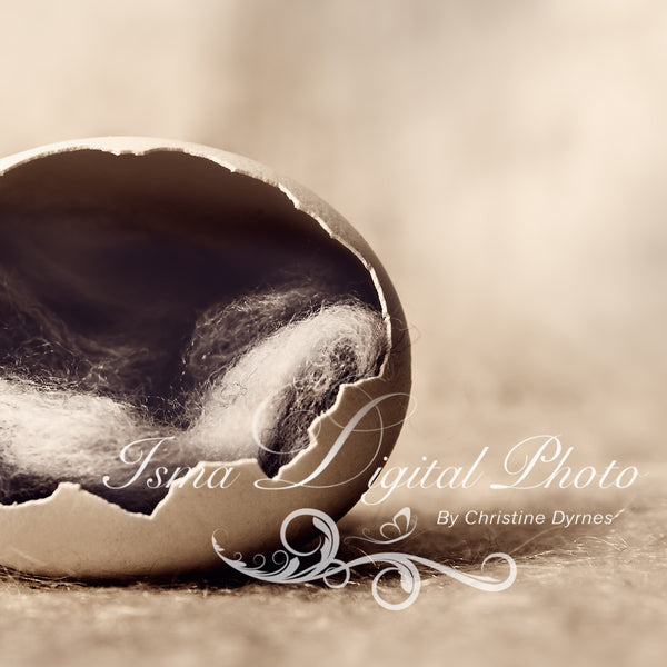 Egg  2 - Beautiful Digital background Newborn Photography Prop download