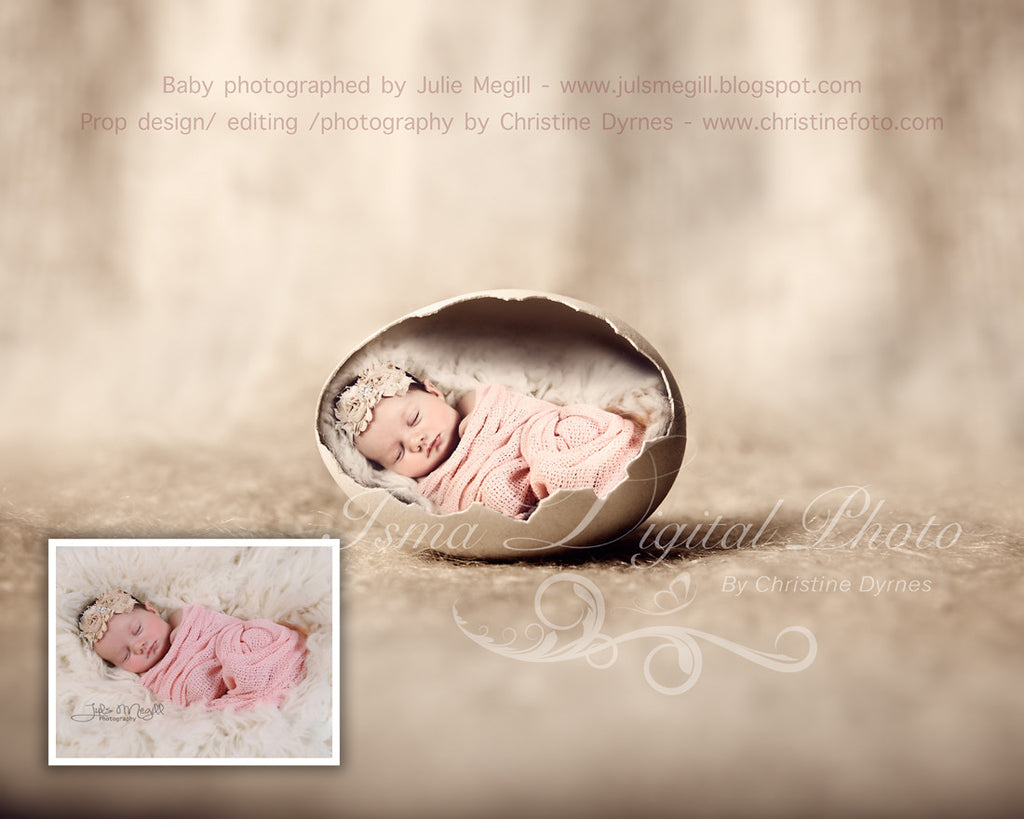 Egg 2 beautiful digital background newborn photography prop download