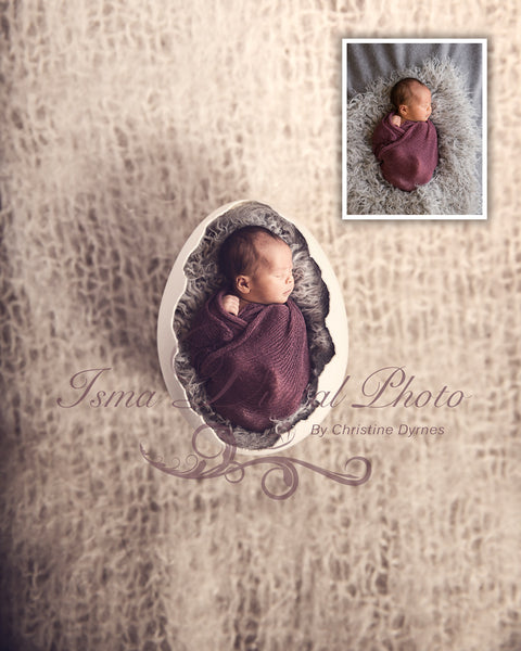 Egg  - Beautiful Digital background Newborn Photography Prop download