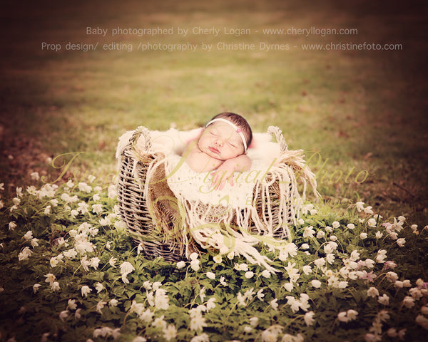 Basket nature outdoor 2 - Beautiful Digital background Newborn Photography Props download - with white flowers, anemone nemorosa