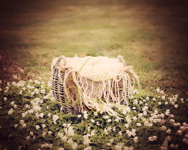 Basket nature 2 - Digital backdrop /background