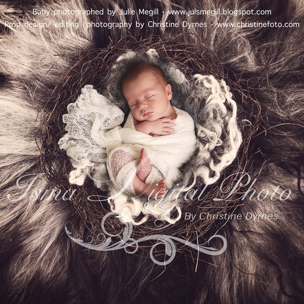 Artistically Nest whit wool - Beautiful Digital background Newborn Photography Prop download